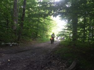 Motorcycle riders on a trail